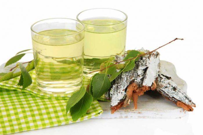 Березовый сок – кладезь полезных для организма человека веществ