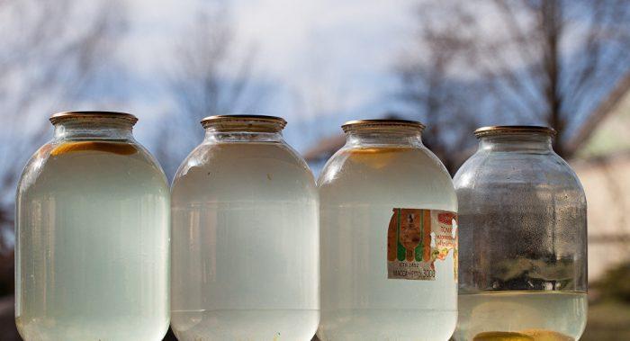Березовый сок помогает от разных болезней