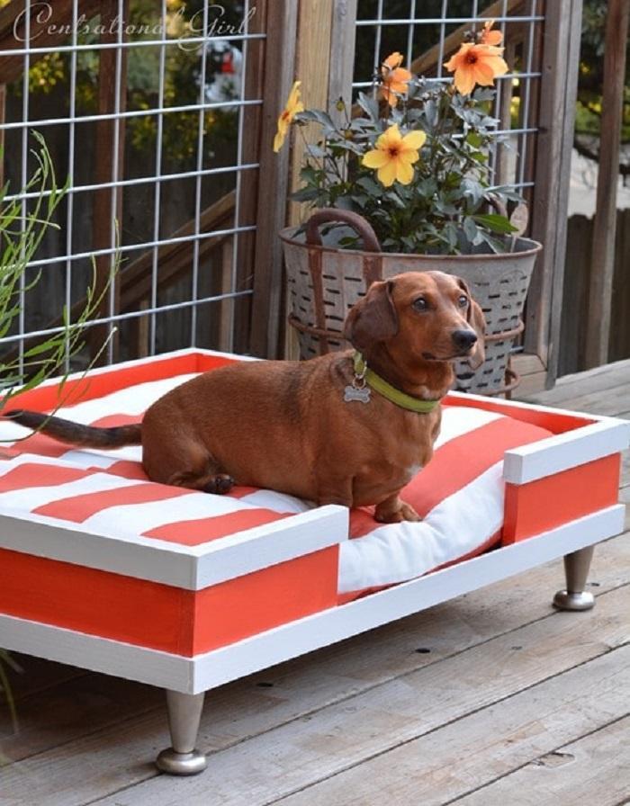 Готовая лежанка-кровать для собаки
