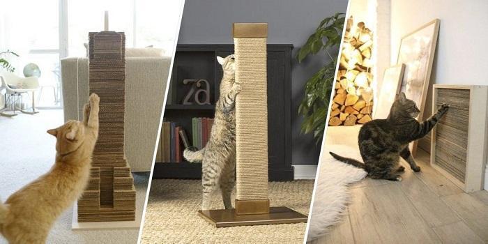 Когтеточки для кошек бывают разные